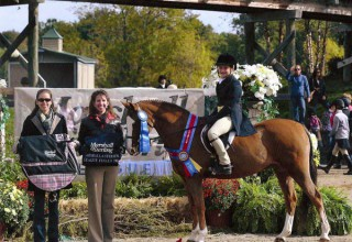 Anna Platek aboard Forever After - 2011 Champion at the Marshall & Sterling League National Finals in the Children's Hunter Pony division